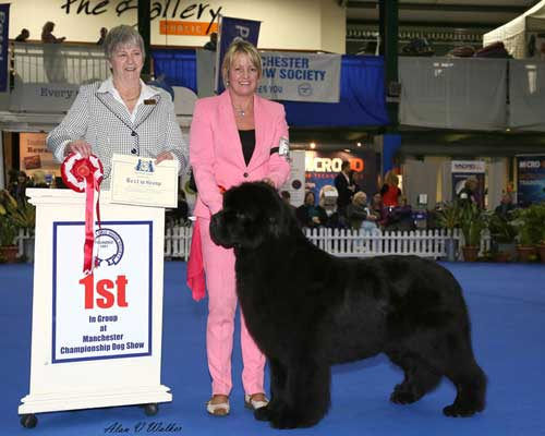 Deep Love Head Over Heels, JW winning the Working Group at Manchester Dog Show Society